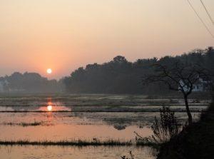 sunrise-rachol